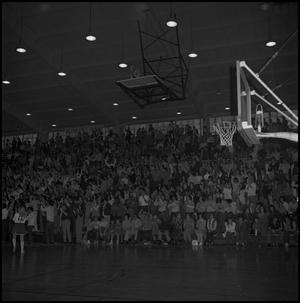 Primary view of object titled '[Basketball Fans at NT Eagles Game]'.