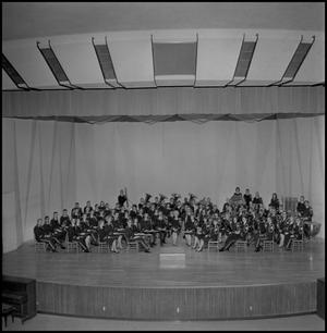 Primary view of object titled '[Concert band group picture]'.