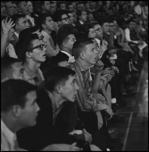 Primary view of object titled '[Crowd at a Basketball Game]'.