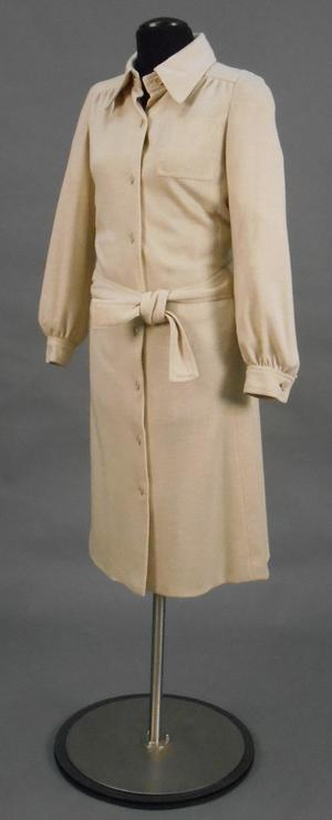 Primary view of object titled 'Shirtwaist Dress'.