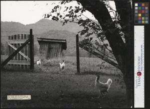 Primary view of object titled '[The Gate to Grandpa's Outhouse (1)]'.