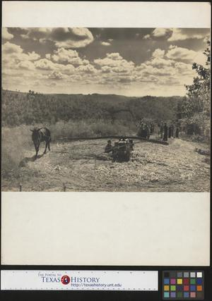Primary view of object titled '[Man Working on Farm]'.