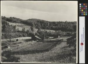 Primary view of object titled '[Photograph of Farm]'.