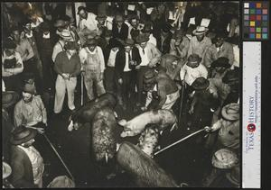 Primary view of object titled '[Group of men at a hog auction]'.