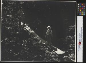 Primary view of object titled '[Two children crossing a creek]'.