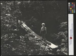 Primary view of object titled '[Boy Walking on a Foot Bridge]'.