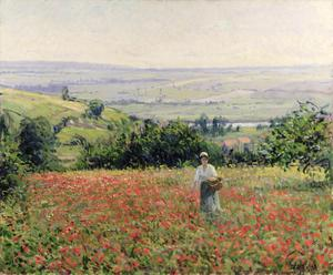 Primary view of object titled 'Woman in a Poppy Field'.