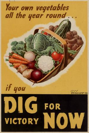 Primary view of object titled 'Your own vegetables all the year round-- : if you dig for victory now.'.