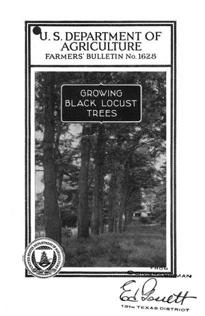 Primary view of object titled 'Growing black locust trees.'.