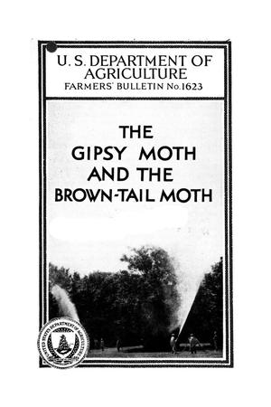 Primary view of object titled 'The gipsy moth and the brown-tail moth.'.