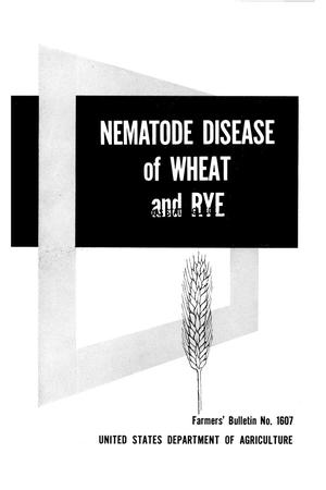 Primary view of object titled 'Nematode disease of wheat and rye.'.