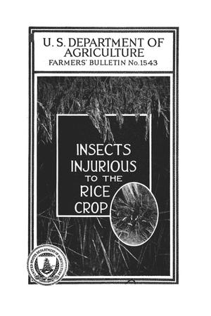 Primary view of object titled 'Insects injurious to the rice crop.'.