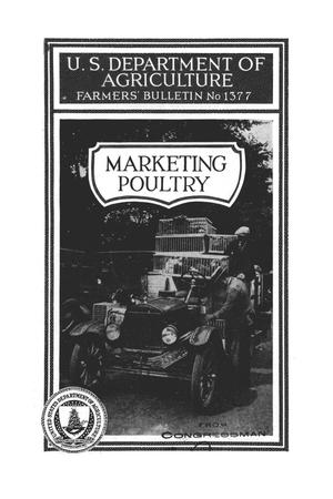 Primary view of object titled 'Marketing poultry.'.