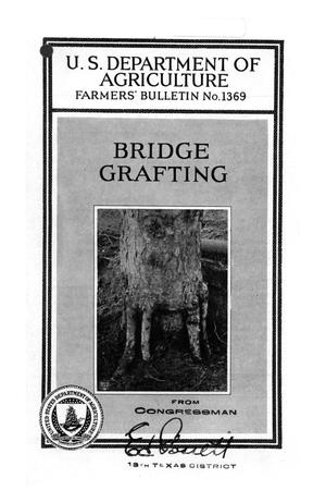 Primary view of object titled 'Bridge grafting.'.