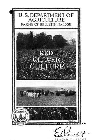 Primary view of Red-clover culture.