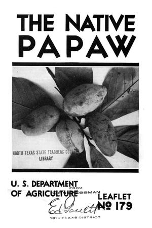 Primary view of object titled 'The native papaw.'.