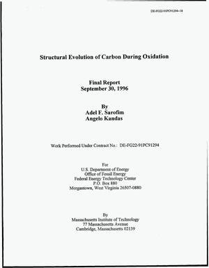 Primary view of object titled 'Structural Evolution of Carbon During Oxidation'.