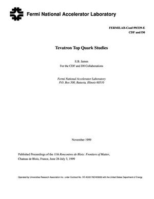 Primary view of object titled 'Tevatron Top Quark Studies'.