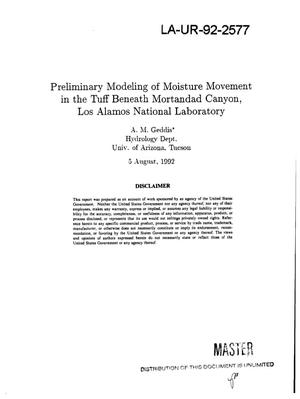 Primary view of object titled 'Preliminary modeling of moisture movement in the tuff beneath Mortandad Canyon, Los Alamos National Laboratory'.