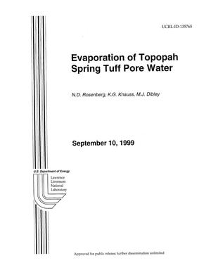 Primary view of object titled 'Evaporation of Topopah Spring tuff pore water'.