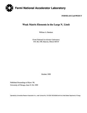 Primary view of object titled 'Weak matrix elements in the large N{sub c} limit'.
