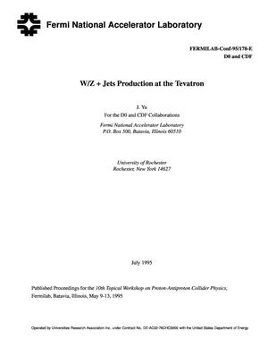 Primary view of object titled 'W/Z + Jets production at the Tevatron'.