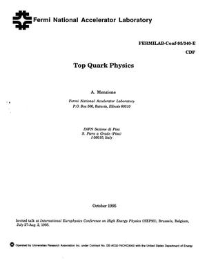 Primary view of object titled 'Top quark physics'.