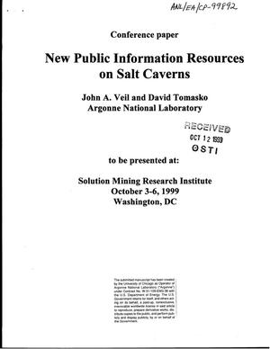 Primary view of object titled 'New public information resources on salt caverns.'.