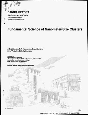 Primary view of object titled 'Fundamental science of nanometer-size clusters'.