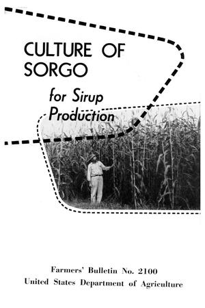 Primary view of object titled 'Culture of sorgo.'.