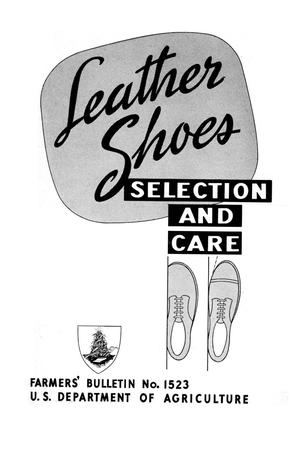 Primary view of Leather Shoes: Selection and Care.