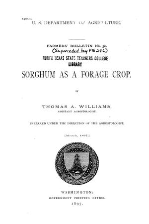 Primary view of object titled 'Sorghum as a forage crop.'.
