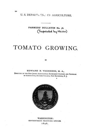 Primary view of object titled 'Tomato growing.'.