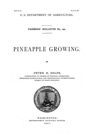 Primary view of object titled 'Pineapple growing.'.