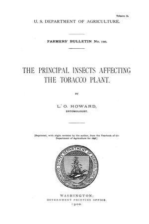 Primary view of object titled 'The principal insects affecting the tobacco plant.'.