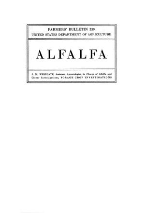 Primary view of object titled 'Alfalfa.'.