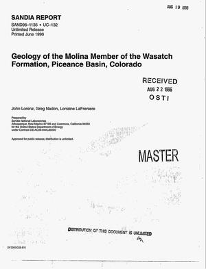 Primary view of object titled 'Geology of the Molina Member of the Wasatch Formation, Piceance Basin, Colorado'.
