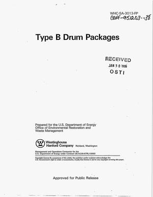 Primary view of object titled 'Type B Drum packages'.