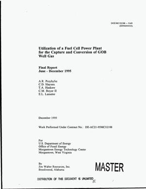 Primary view of object titled 'Utilization of a fuel cell power plant for the capture and conversion of gob well gas. Final report, June--December, 1995'.