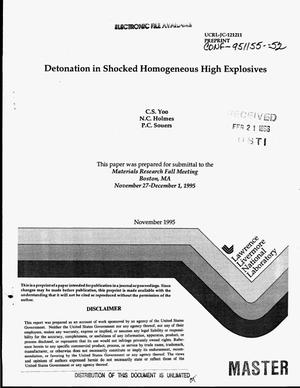 Primary view of object titled 'Detonation in shocked homogeneous high explosives'.