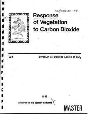 Primary view of object titled 'Response of vegetation to carbon dioxide - sorghum at elevated levels of CO{sub 2}'.