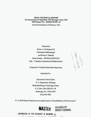 Primary view of object titled 'Volatiles combustion in fluidized beds. Final technical report, 4 September 1992--4 June 1995'.