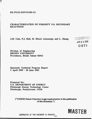 Primary view of object titled 'Characterization of porosity via secondary reactions. Quarterly technical progress report, 1 April 1995--30 June 1995'.