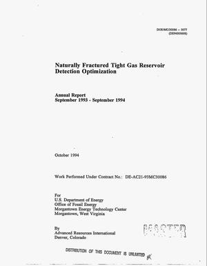 Primary view of object titled 'Naturally fractured tight gas reservoir detection optimization. Annual report, September 1993--September 1994'.