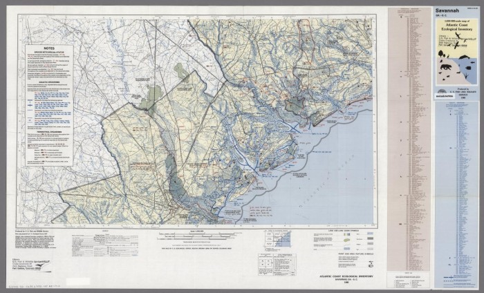 Savannah South Carolina Map.Savannah Georgia South Carolina Digital Library