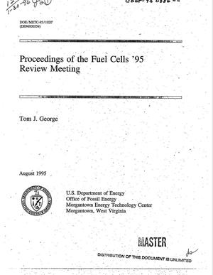 Primary view of object titled 'Proceedings of the fuel cells `95 review meeting'.