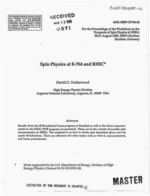 Primary view of object titled 'Spin physics at E-704 and RHIC'.