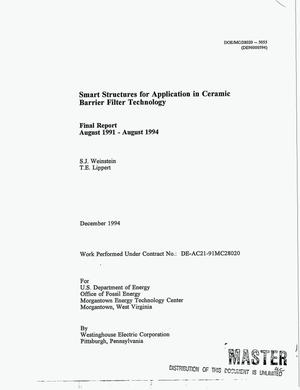 Primary view of object titled 'Smart structures for application in ceramic barrier filter technology. Final report, August 1991--August 1994'.