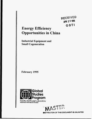 Primary view of object titled 'Energy efficiency opportunities in China. Industrial equipment and small cogeneration'.