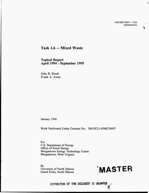 Primary view of object titled 'Task 1.6 -- Mixed waste. Topical report, April 1994--September 1995'.
